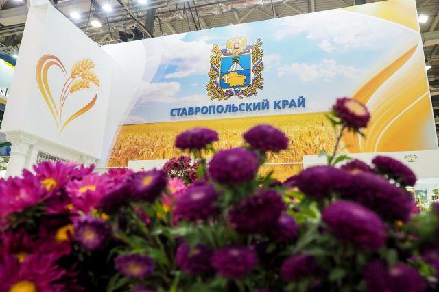 Ставропольский край заключил крупные соглашения на «Золотой осени — 2018»