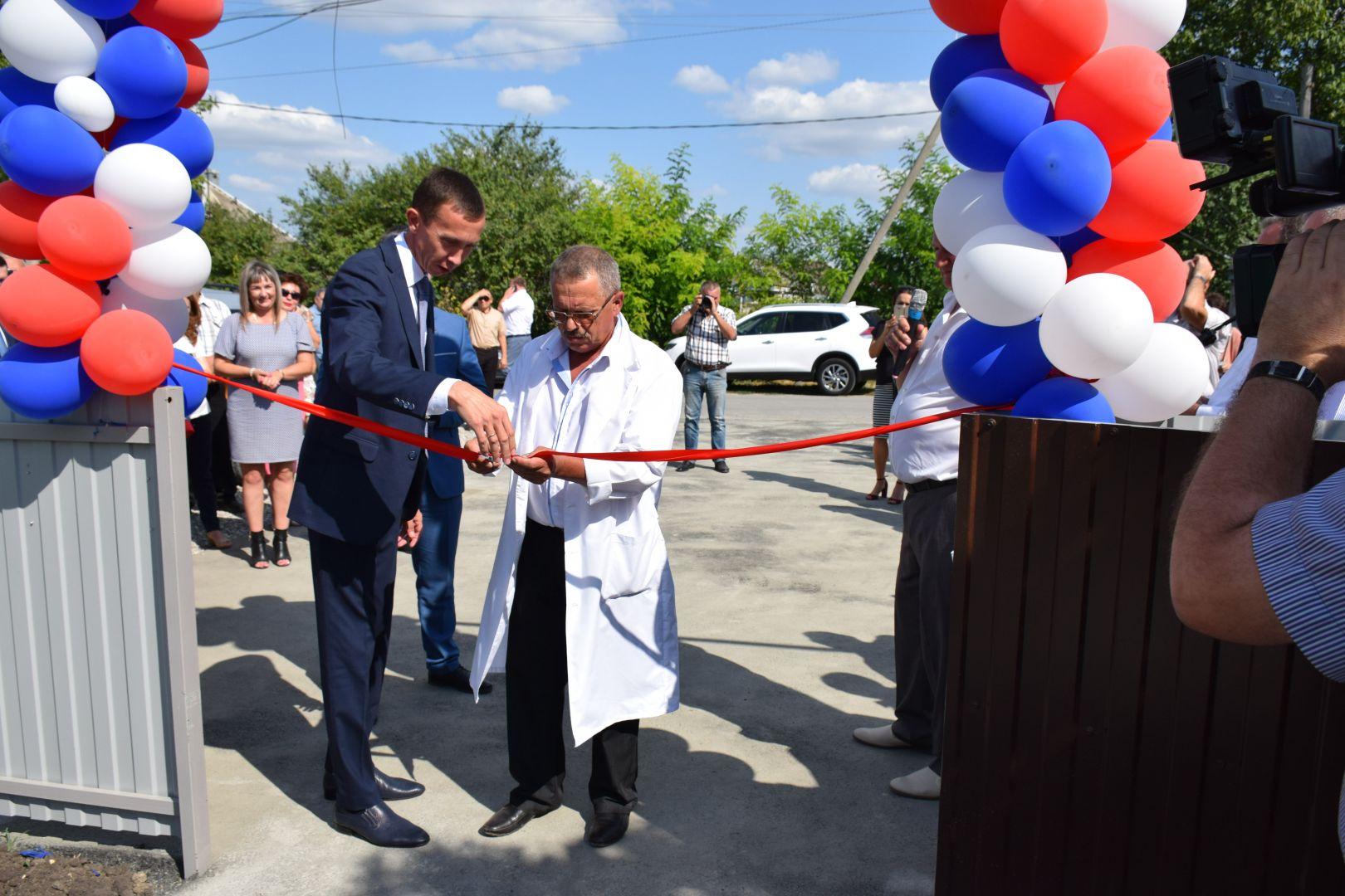 До конца года на Ставрополье откроются 20 новых ветлечебниц