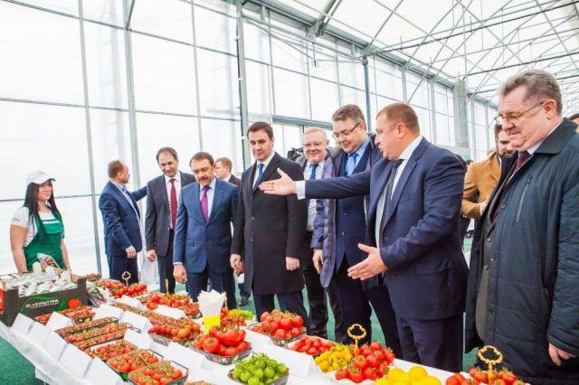 На Ставрополье выросло число прибыльных предприятий
