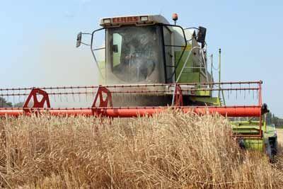 Природные трудности не оставят край без урожая