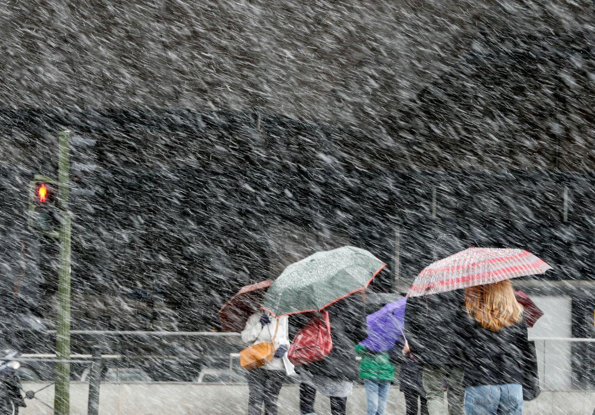 На Ставрополье 16 декабря прогнозируется сильное налипание мокрого снега