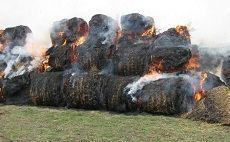 Пожарные 12 часов тушили животноводческий комплекс в Ипатовском районе