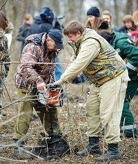 В Ставрополе взамен вырубленных деревьев посадили новые