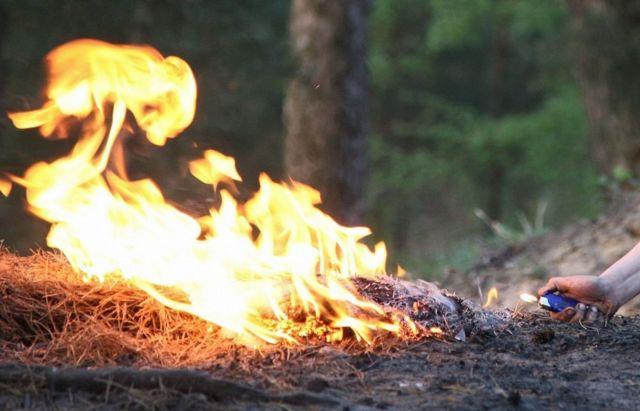 Молодой ставрополец поджёг четыре сельских подворья