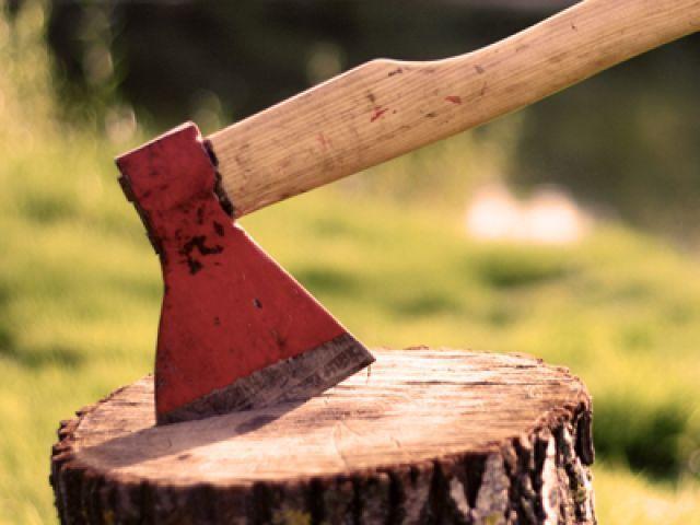 В Ставрополе возбуждено уголовное дело по факту вырубки деревьев на улице Соборной