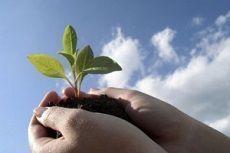 На Ставрополье пройдет Международная экологическая неделя