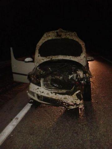 На Ставрополье водитель врезался в стадо овец, пострадала пассажирка