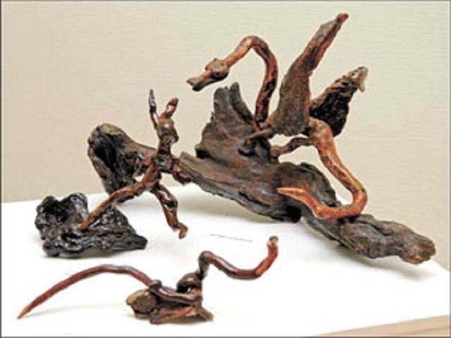 В Пятигорске открылась выставка корнепластики
