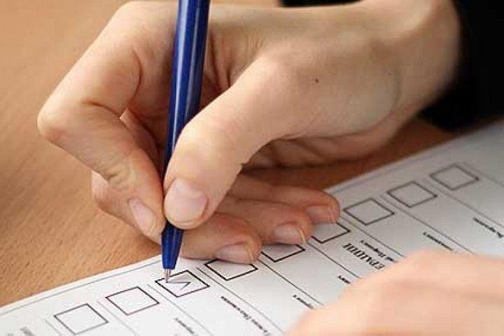 Что еще могут сделать на избирательных участках ставропольцы