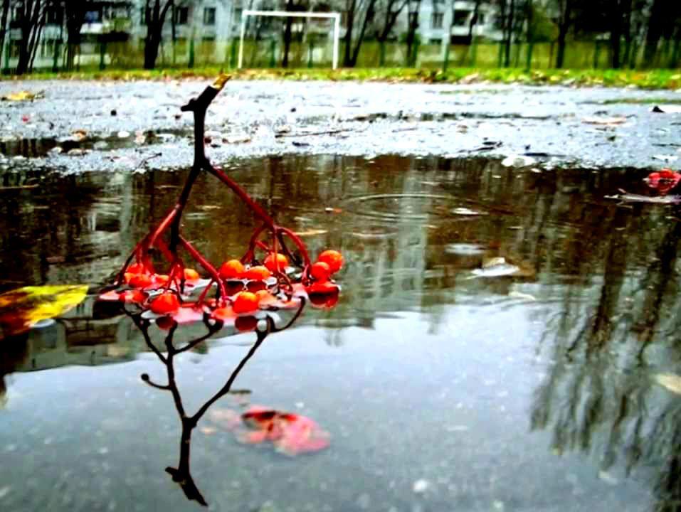 На Ставрополье в выходные ожидаются дожди