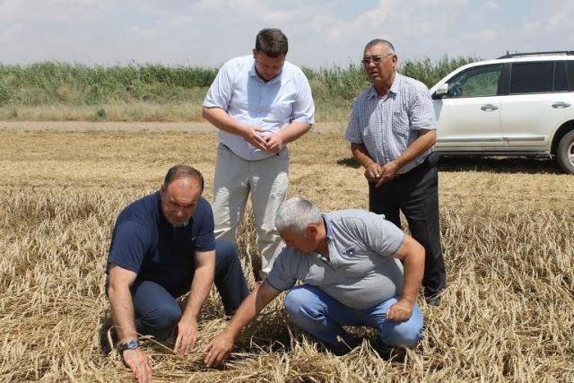 Глава краевого Минсельхоза оценил успехи аграриев Нефтекумского района