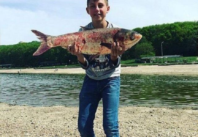 В Комсомольском озере Ставрополя школьник поймал огромного толстолобика
