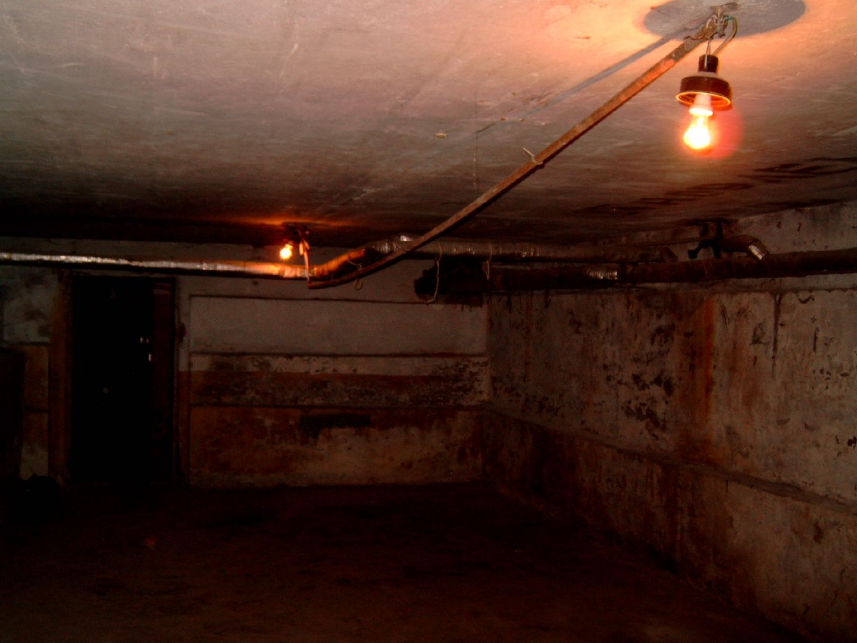 В Ставропольском крае мать похоронила в подвале тела двух детей и скрылась