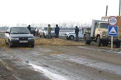 Жители Красногвардейского в течение года не имеют права заводить свиней