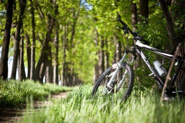 Ставропольцев призывают пересесть на велосипеды