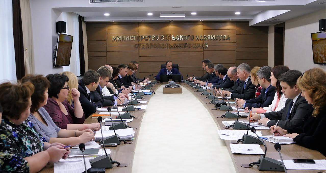 Ставрополье увеличило производство свинины иптицы засчет новых инвестпроектов