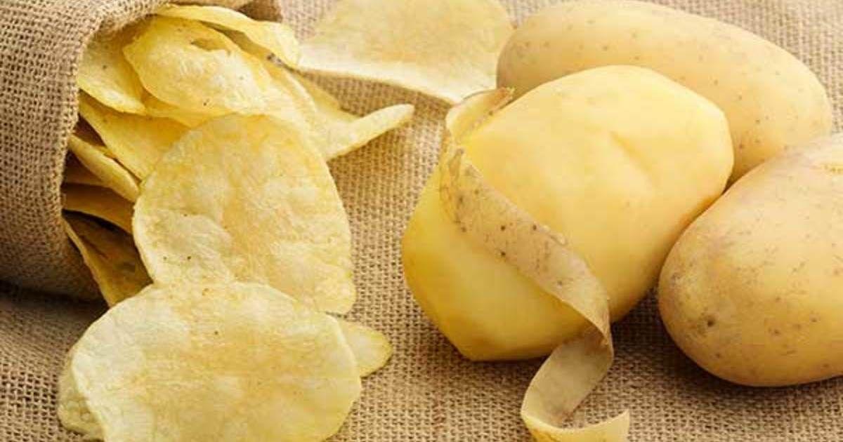 На Ставрополье собрали 8 тысяч тонн чипсового картофеля