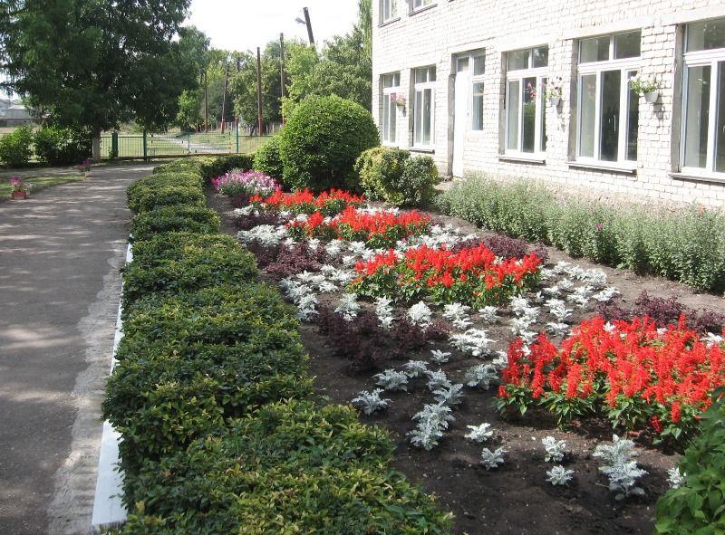Глава края инициировал программу ремонта школьных дворов