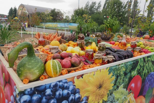В День края на Ставрополье открылась крупная сельхозвыставка