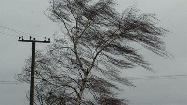 В Ставрополе десять автомобилей повреждены сорванной сильным ветром крышей