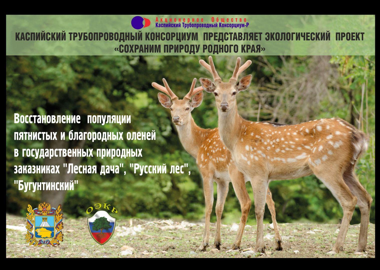 В Ставропольском крае реализуется экопроект «Сохраним природу родного края»