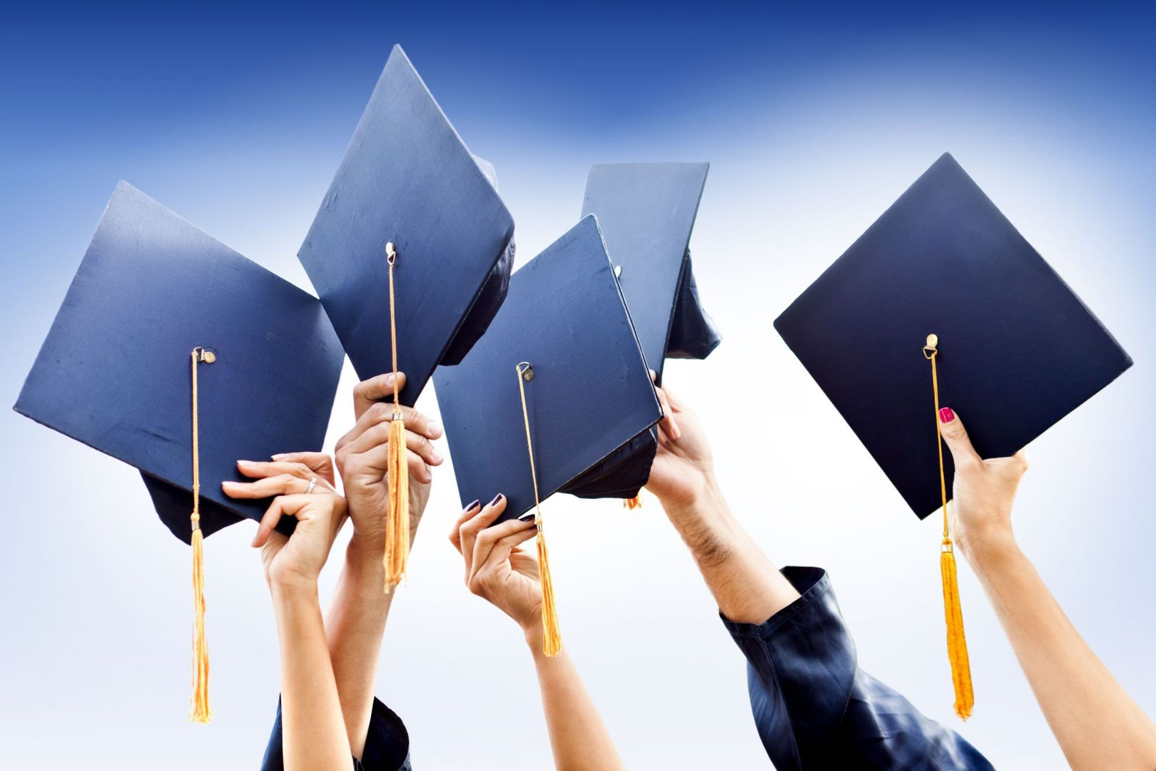 Ставропольские студенты могут получить диплом Технического  Ставропольские студенты могут получить диплом Технического университета Дрездена