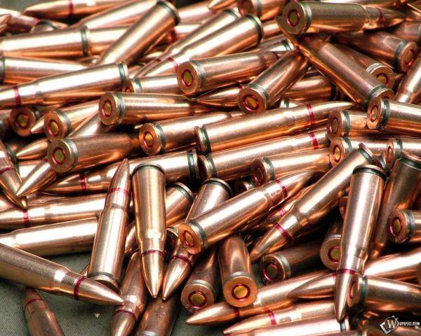 Ставропольчанку осудили за хранение в дамской сумочке патронов
