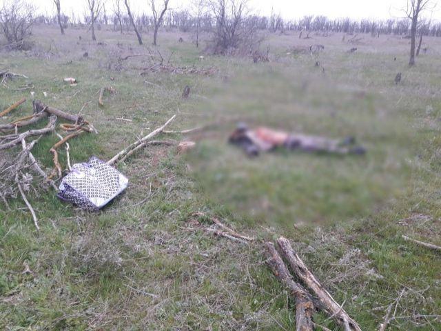 На Ставрополье обнаружили тело мужчины