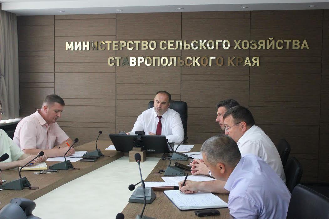 ВСтавропольском крае соберут урожай с 2-х  млн.  гектаров