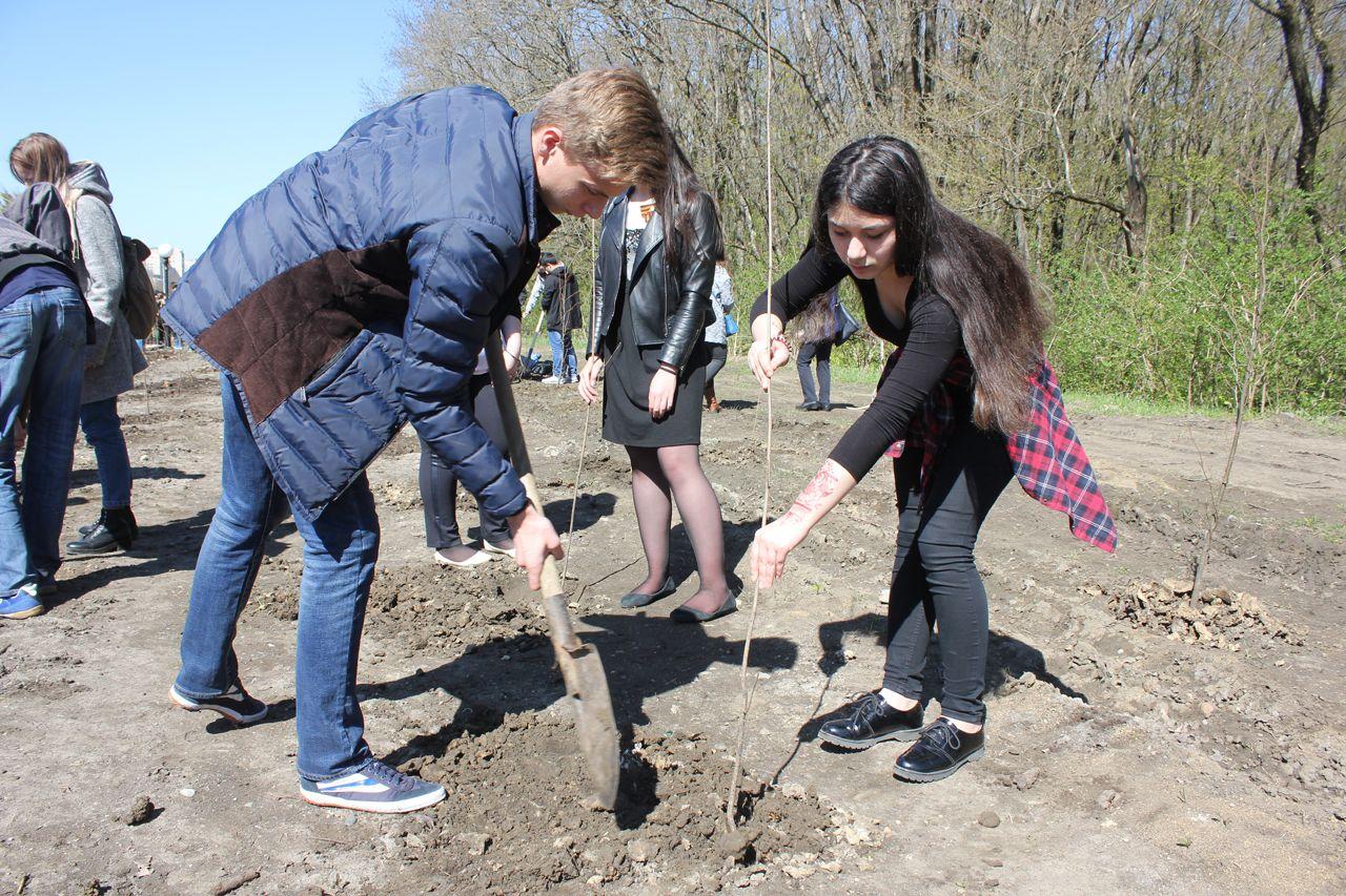 Вканун 9мая наулице Доваторцев Ставрополя посадят 800 деревьев