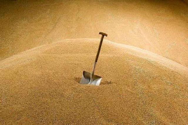 На Ставрополье перевернулся зерновоз