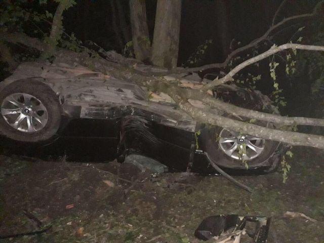 Под Ставрополем БМВ Х5 столкнулось с деревом: погибли 2 человека