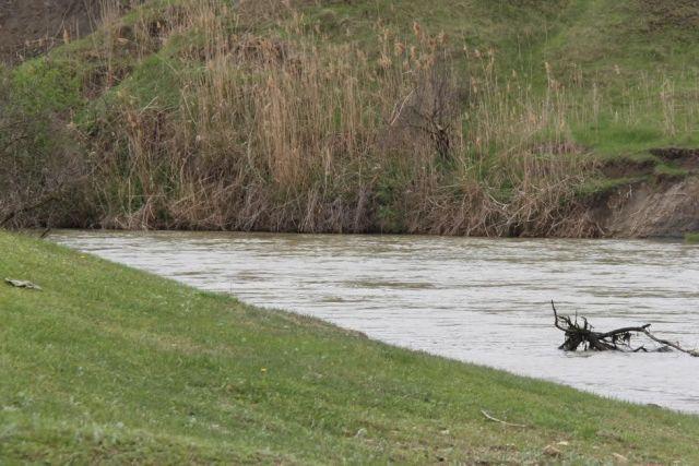 МЧС Ставрополья: Уровень воды в Кубани снижается