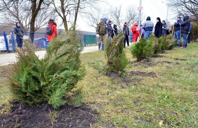 В Ставрополе на субботнике высадили 1700 новых деревьев
