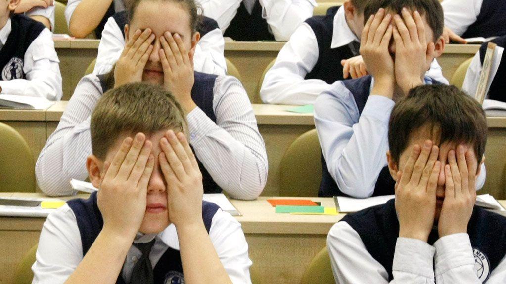 Чиновников отобразования наСтаврополье наказали запобои школьника