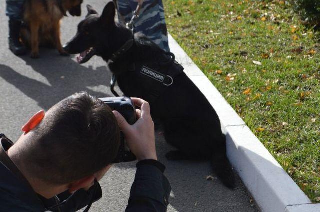 В Ставрополе прошёл фотоконкурс «В объективе — полиция!»