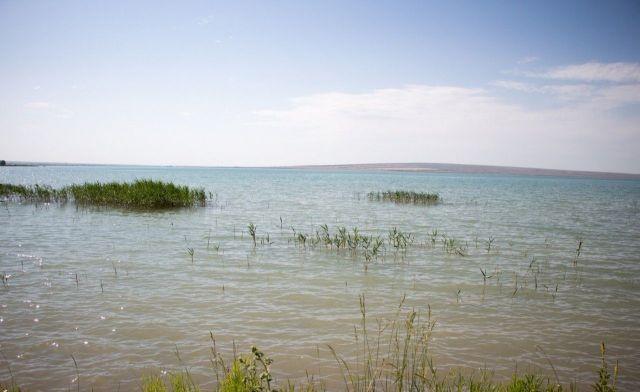 На Ставрополье реконструируют Грушевское водохранилище