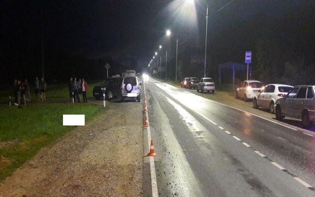 В Ставропольском крае водитель легковушки насмерть сбил мужчину
