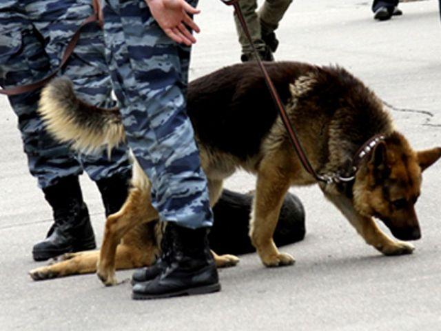 В Кисловодске неизвестный сообщил о бомбе в одном из кафе