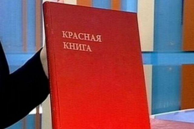 В Ставропольском крае двое предпринимателей незаконно содержали краснокнижных птиц